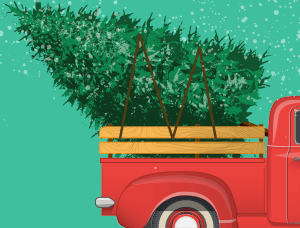A Christmas tree in the back of a red pickup truck